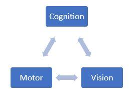 Cognition Motor Vision Chart